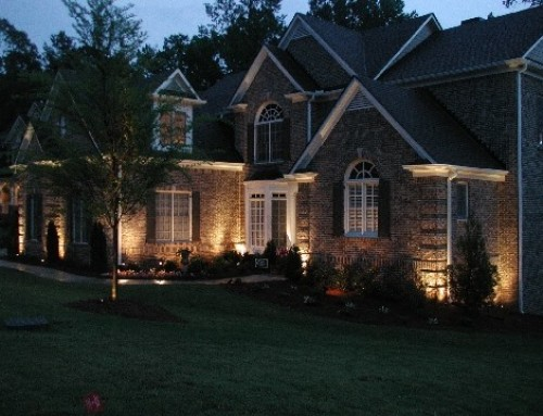 Why Professional Landscape Lighting is the Right Choice