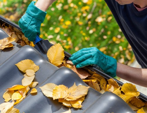 Five Reasons To Make Sure Your Gutters & Leaders Are Clean