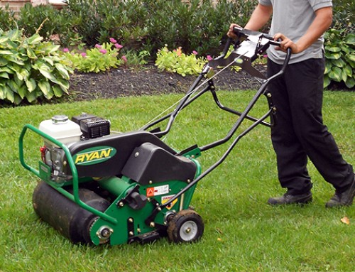 Now is the time for lawn care!