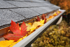 gutters_cleaning