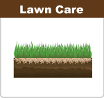 lawn-care-5boxes