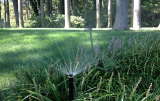 Long Island Sprinklers