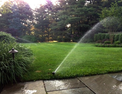 Sprinkler System Check Up- Mid Summer