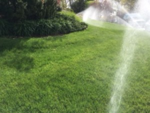 Spring Start Up And Summerizing Of Sprinkler Systems