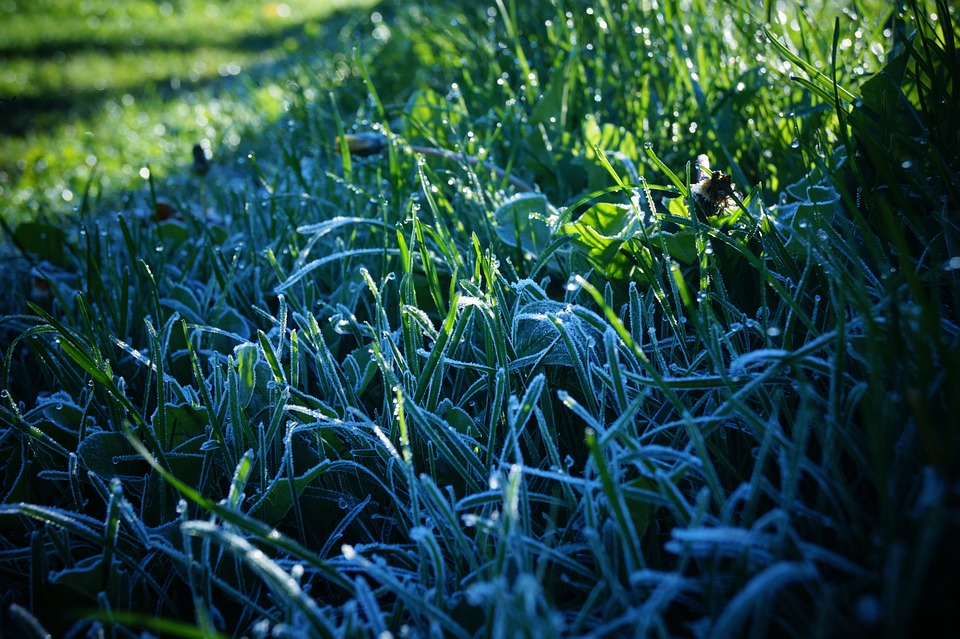 Now Is The Best Time To Winterize Your Long Island Sprinkler System